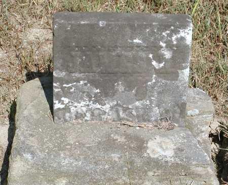 UNKNOWN, JAMES L. - Meigs County, Ohio | JAMES L. UNKNOWN - Ohio Gravestone Photos