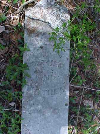 UNKNOWN, MOTHER & FATHER - Meigs County, Ohio | MOTHER & FATHER UNKNOWN - Ohio Gravestone Photos