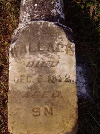 UNKNOWN, WALLACE - Meigs County, Ohio   WALLACE UNKNOWN - Ohio Gravestone Photos