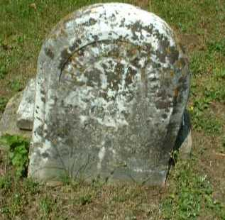 UNREADABLE, ONE - Meigs County, Ohio | ONE UNREADABLE - Ohio Gravestone Photos