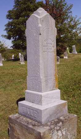 VALE, ELI - OVERALL VIEW - Meigs County, Ohio | ELI - OVERALL VIEW VALE - Ohio Gravestone Photos