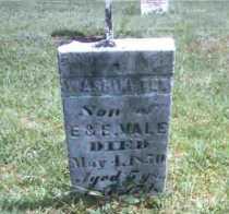 VALE, WASHINGTON - Meigs County, Ohio | WASHINGTON VALE - Ohio Gravestone Photos