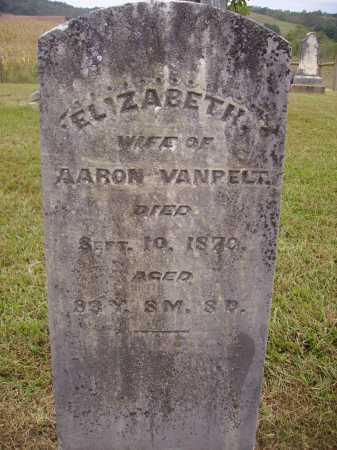 VANPELT, ELIZABETH - Meigs County, Ohio | ELIZABETH VANPELT - Ohio Gravestone Photos