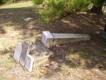 CHAPIN VANPELT, SOPHIA - Meigs County, Ohio   SOPHIA CHAPIN VANPELT - Ohio Gravestone Photos