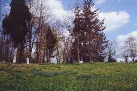 AUSTIN CEMETERY, VIEW 2 - Meigs County, Ohio | VIEW 2 AUSTIN CEMETERY - Ohio Gravestone Photos