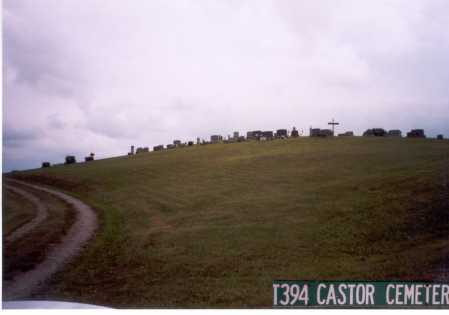 CASTOR CEMETERY,  - Meigs County, Ohio |  CASTOR CEMETERY - Ohio Gravestone Photos