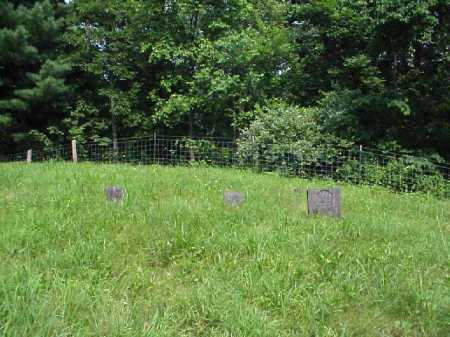 PEARSALL, CEMETERY VIEW - Meigs County, Ohio | CEMETERY VIEW PEARSALL - Ohio Gravestone Photos