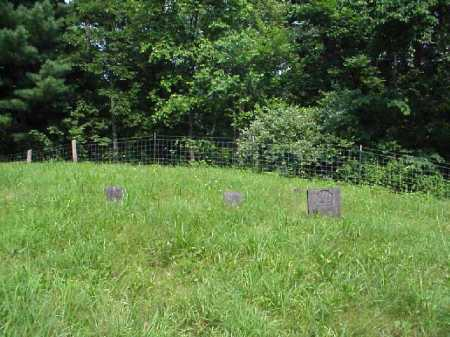 PEARSALL, CEMETERY VIEW - Meigs County, Ohio   CEMETERY VIEW PEARSALL - Ohio Gravestone Photos