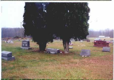 SCHOOL LOT,  - Meigs County, Ohio |  SCHOOL LOT - Ohio Gravestone Photos