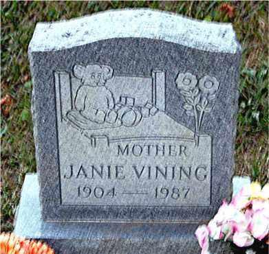 VINING, JANIE - Meigs County, Ohio   JANIE VINING - Ohio Gravestone Photos