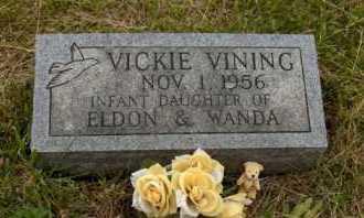 VINING, VICKIE - Meigs County, Ohio | VICKIE VINING - Ohio Gravestone Photos