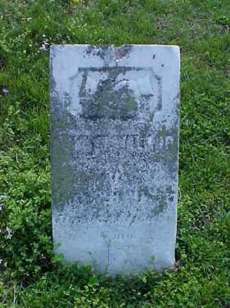 WALKUP, ANN M. - Meigs County, Ohio | ANN M. WALKUP - Ohio Gravestone Photos