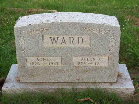 WARD, AGNES - Meigs County, Ohio | AGNES WARD - Ohio Gravestone Photos