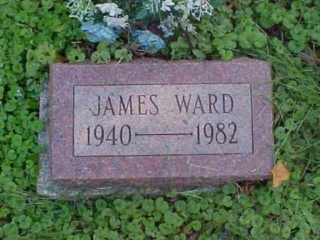 WARD, JAMES - Meigs County, Ohio | JAMES WARD - Ohio Gravestone Photos
