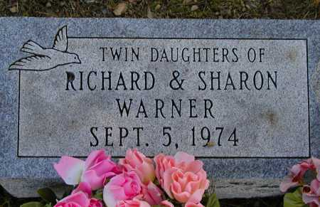 WARNER, TWIN DAUGHTERS - Meigs County, Ohio | TWIN DAUGHTERS WARNER - Ohio Gravestone Photos