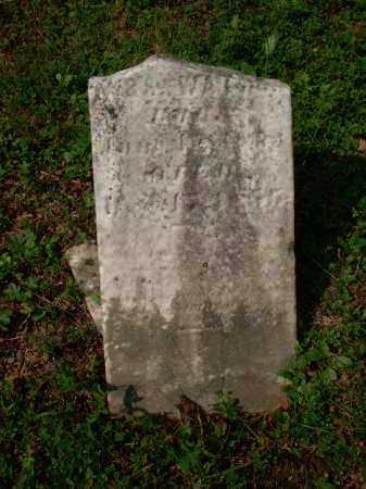 WATSON, SARAH JANE - Meigs County, Ohio | SARAH JANE WATSON - Ohio Gravestone Photos