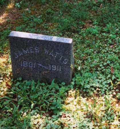 WATTS, JAMES - Meigs County, Ohio | JAMES WATTS - Ohio Gravestone Photos