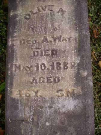 WAY, OLIVE M. - Meigs County, Ohio   OLIVE M. WAY - Ohio Gravestone Photos
