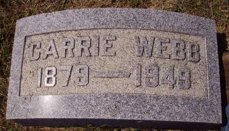 WEBB, CARRIE - Meigs County, Ohio | CARRIE WEBB - Ohio Gravestone Photos