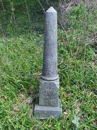 WEHE, ELEONORA - Meigs County, Ohio | ELEONORA WEHE - Ohio Gravestone Photos
