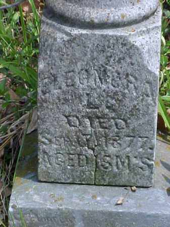 WEHE, ELEONORA - Meigs County, Ohio   ELEONORA WEHE - Ohio Gravestone Photos