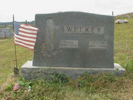WELKER, GOLDIE - Meigs County, Ohio | GOLDIE WELKER - Ohio Gravestone Photos