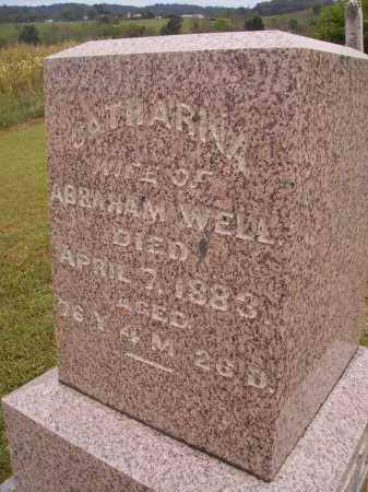 WELL, CATHARINA - Meigs County, Ohio | CATHARINA WELL - Ohio Gravestone Photos