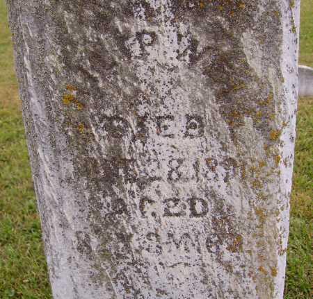 WELL, PHILIP - Meigs County, Ohio | PHILIP WELL - Ohio Gravestone Photos