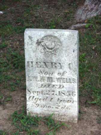 WELLS, HENRY - Meigs County, Ohio | HENRY WELLS - Ohio Gravestone Photos