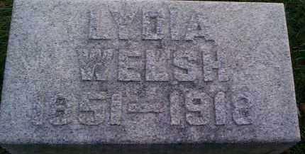 DOUGLAS WELSH, LYDIA MARGARET - Meigs County, Ohio | LYDIA MARGARET DOUGLAS WELSH - Ohio Gravestone Photos