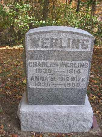 WERLING, CHARLES - Meigs County, Ohio | CHARLES WERLING - Ohio Gravestone Photos