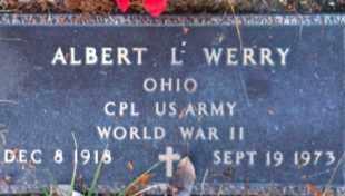 WERRY, ALBERT - Meigs County, Ohio | ALBERT WERRY - Ohio Gravestone Photos