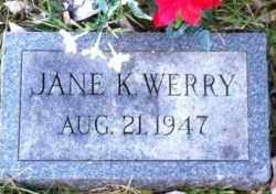 WERRY, JANE - Meigs County, Ohio   JANE WERRY - Ohio Gravestone Photos
