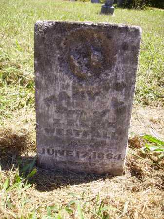 WESTFALL, MARY - Meigs County, Ohio | MARY WESTFALL - Ohio Gravestone Photos