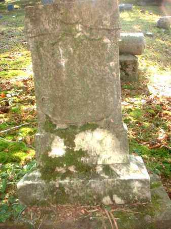 WEYERSMILLER, JOHN EDWARD - Meigs County, Ohio | JOHN EDWARD WEYERSMILLER - Ohio Gravestone Photos