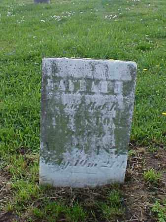 WHETSTONE, HANNA - Meigs County, Ohio   HANNA WHETSTONE - Ohio Gravestone Photos