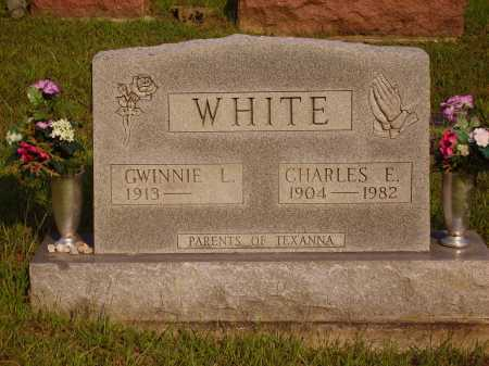 WHITE, CHARLES E. - Meigs County, Ohio | CHARLES E. WHITE - Ohio Gravestone Photos