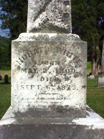 WHITE, HORATIO - Meigs County, Ohio | HORATIO WHITE - Ohio Gravestone Photos