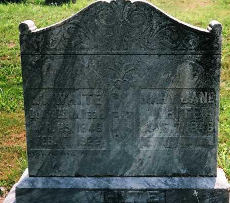 ARNETT WHITE, MARY JANE - Meigs County, Ohio | MARY JANE ARNETT WHITE - Ohio Gravestone Photos