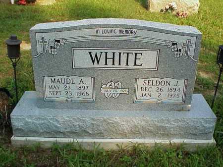 WHITE, SELDON J. - Meigs County, Ohio | SELDON J. WHITE - Ohio Gravestone Photos