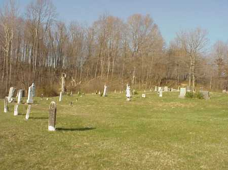 WHITE OAK CEMETERY VIEW, BEDFORD TWP. - Meigs County, Ohio | BEDFORD TWP. WHITE OAK CEMETERY VIEW - Ohio Gravestone Photos