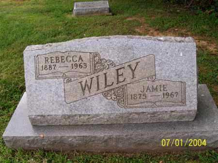 WILEY, REBECCA - Meigs County, Ohio | REBECCA WILEY - Ohio Gravestone Photos