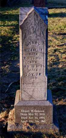 WILKINSON, HENRY - Meigs County, Ohio | HENRY WILKINSON - Ohio Gravestone Photos