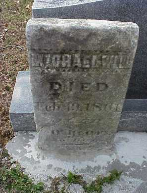 WILL, MICHAEL - Meigs County, Ohio | MICHAEL WILL - Ohio Gravestone Photos