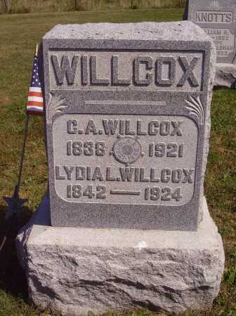 WILLCOX, LYDIA L. - Meigs County, Ohio | LYDIA L. WILLCOX - Ohio Gravestone Photos