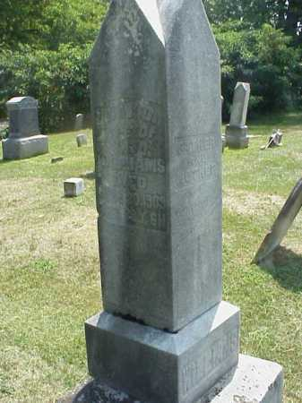 WILLIAMS, ANN - Meigs County, Ohio | ANN WILLIAMS - Ohio Gravestone Photos