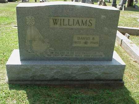 WILLIAMS, DAVID B. - Meigs County, Ohio | DAVID B. WILLIAMS - Ohio Gravestone Photos