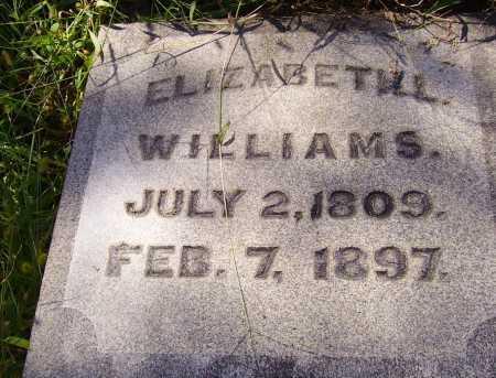 WILLIAMS, ELIZABETH - CLOSEVIEW - Meigs County, Ohio | ELIZABETH - CLOSEVIEW WILLIAMS - Ohio Gravestone Photos