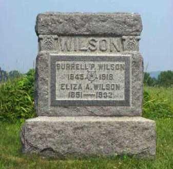 WILSON, ELIZA A. - Meigs County, Ohio | ELIZA A. WILSON - Ohio Gravestone Photos
