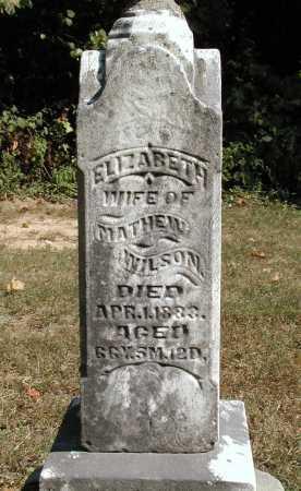 WILSON, ELIZABETH - Meigs County, Ohio   ELIZABETH WILSON - Ohio Gravestone Photos
